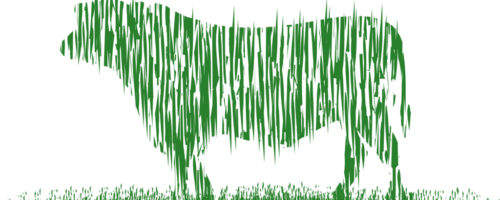Grassfed-Beef5-2-1024x451